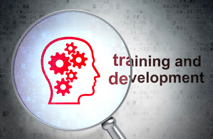 Compliance Training - management development training